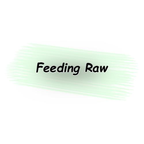 Feeding raw food
